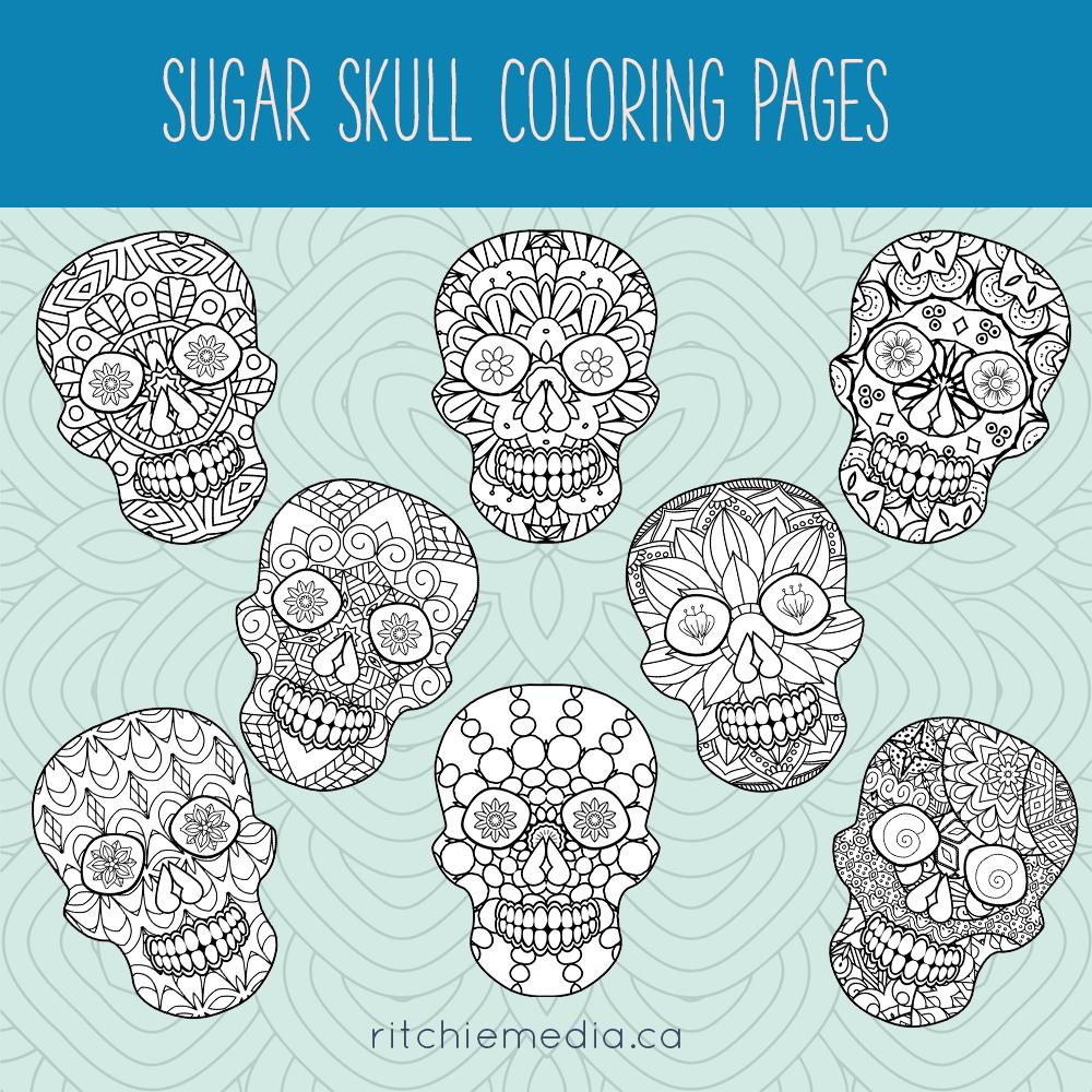 sugar skulls promo image