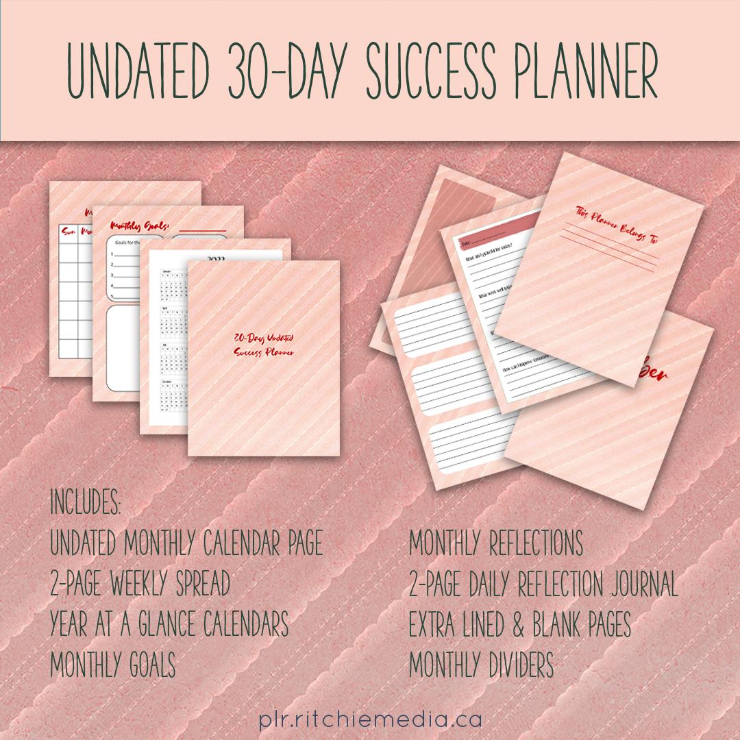 30 Day Undated Success Planner Promo